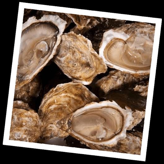 Oysters Alabama